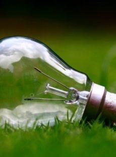 Electricité : des offres vertes et innovantes au service du consommateur ?