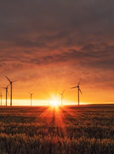 Les corporate PPAs, une solution pour le développement des énergies renouvelables ?